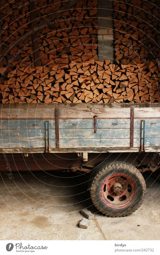 wood logistics Agriculture Forestry Logistics Energy industry Authentic Original Determination Arrangement Firewood Trailer Stack Storage shed firewood store