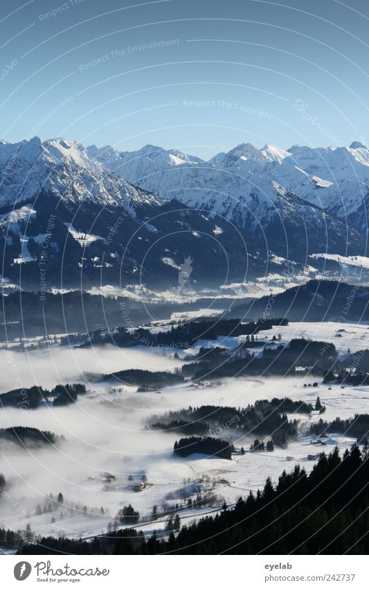 Sky Nature White Tree Vacation & Travel Winter Forest Environment Landscape Snow Mountain Horizon Earth Weather Rock Fog