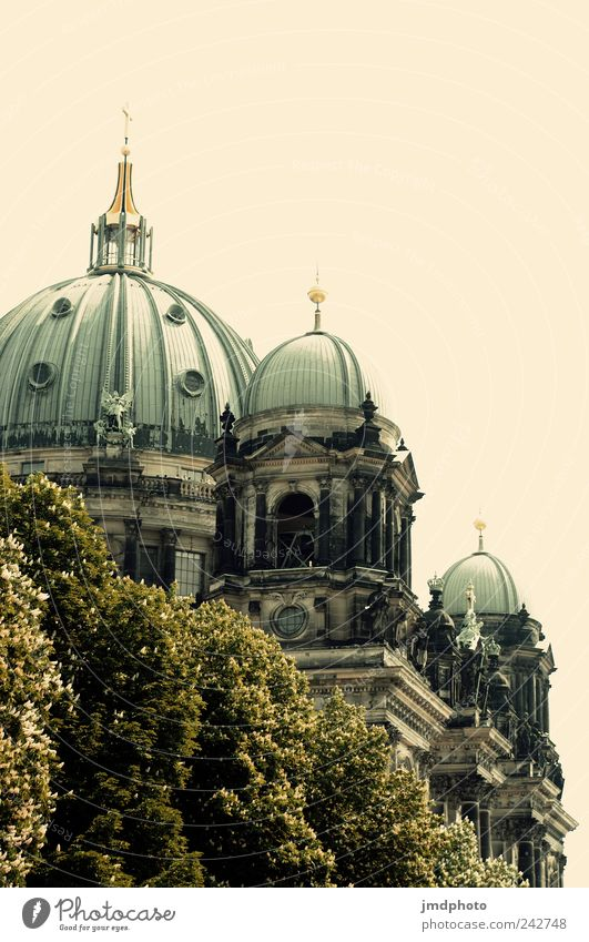 Berlin Cathedral Vacation & Travel Tourism Trip Sightseeing City trip Summer Culture Tree Capital city Church Dome Architecture Tourist Attraction Landmark
