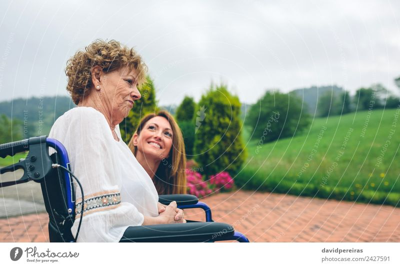 Senior dissatisfied woman in a wheelchair with her daughter Woman Human being Nature Old Plant Landscape Tree Relaxation Adults Lifestyle To talk Health care