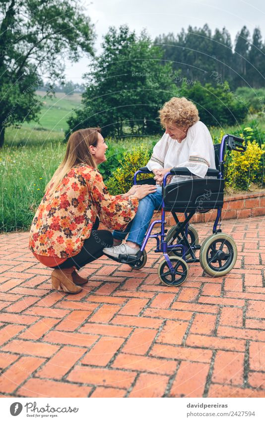 Young woman talking to elderly woman in a wheelchair Woman Human being Nature Old Plant Tree Relaxation Adults Lifestyle To talk Health care Family & Relations