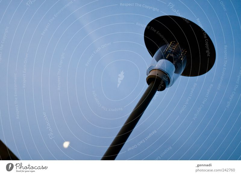 Sky Blue Calm Cold Sadness Illuminate Lantern Moon Beautiful weather Vice Lamp post Cloudless sky Moonlight