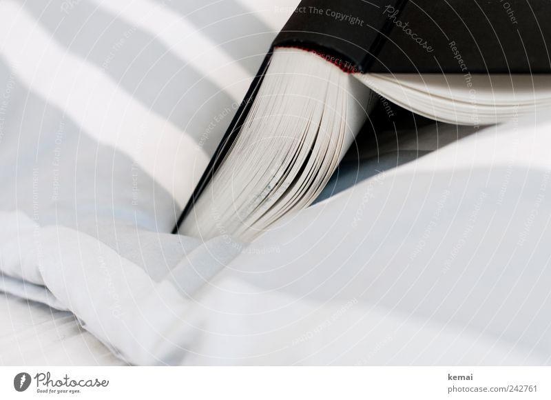 Reading in bed Flat (apartment) Decoration Bed Bedclothes Book Lie Authentic Gray Black White Relaxation Leisure and hobbies Striped Struck Open Colour photo