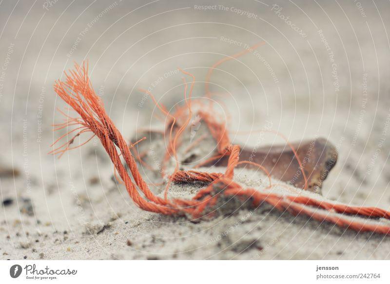 Nature Old Beach Sand Orange Environment Rope Broken Lie Trash String Muddled Find Environmental pollution Remainder Distorted