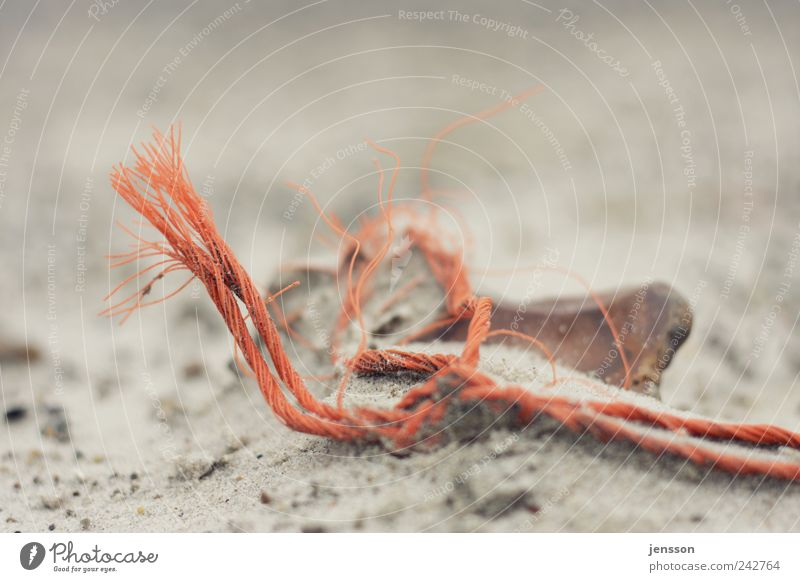 the mouse bit off the thread Environment Nature Sand Beach String Lie Old Broken Environmental pollution Flotsam and jetsam Trash Rope Find Discovery Orange