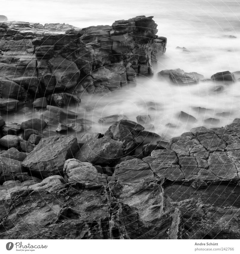 on the rocks (3) Environment Elements Earth Water Rock Waves Coast Exceptional Threat Wet Strong Australia Long exposure Stony Black & white photo Exterior shot