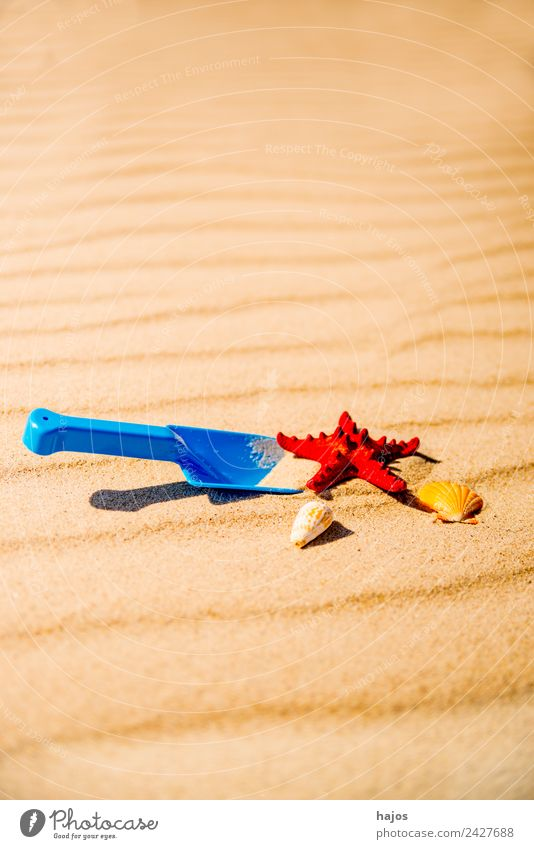 Toy shovel with starfish on a beach Joy Relaxation Leisure and hobbies Playing Vacation & Travel Tourism Summer Beach Child Sand Happiness Warmth Blue Yellow