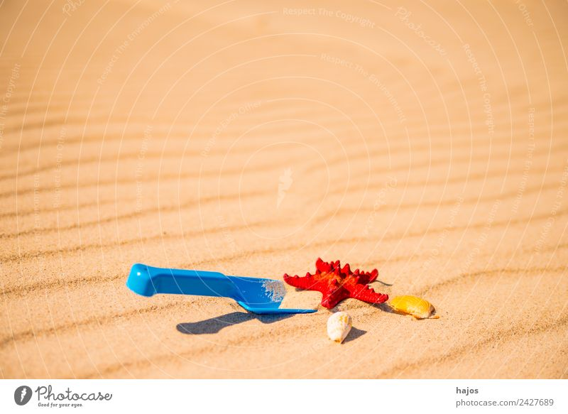 Shovel and starfish on the beach Joy Relaxation Vacation & Travel Summer Beach Child Sand Beautiful weather Friendliness Happiness Maritime Blue Yellow Toys