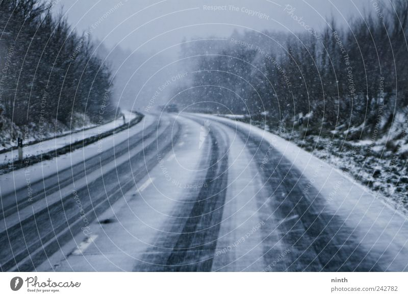 cold winter´s day snowstorm Winter Snow Winter vacation Gale Fog Ice Frost Snowfall Transport Traffic infrastructure Road traffic Motoring Street Car Driving