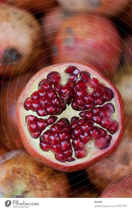 pomegranate Food Fruit Dessert Organic produce Nature Exotic Decoration Sign Fresh Delicious Round Juicy Sweet Brown Pink Red Lust Belief Wanderlust Debauchery