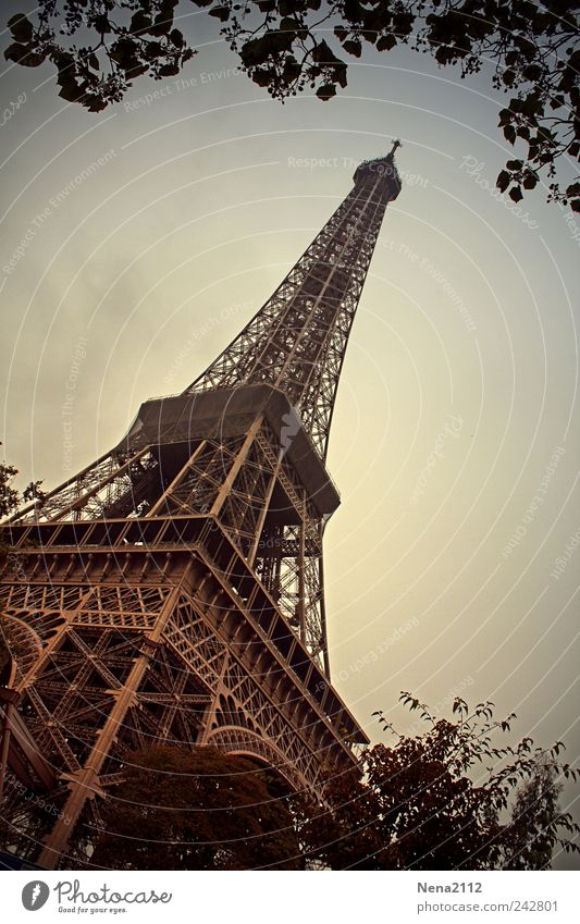 Vacation & Travel Summer Architecture Metal Tall Tourism Europe Tower Symbols and metaphors Manmade structures Paris Diagonal Summer vacation France Downtown
