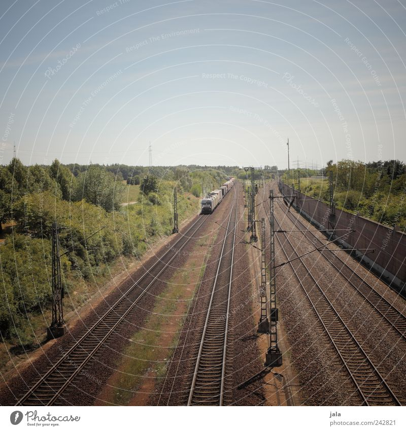freight train Landscape Sky Plant Tree Bushes Foliage plant Transport Means of transport Traffic infrastructure Logistics Rail transport Freight train
