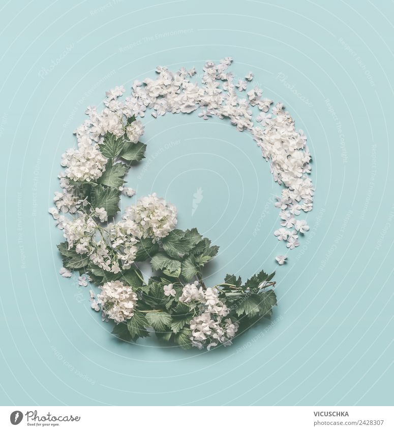 Round flower frame on light blue Style Design Summer Feasts & Celebrations Mother's Day Wedding Birthday Nature Plant Flower Leaf Blossom Decoration Bouquet