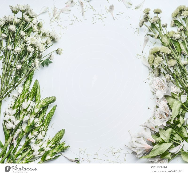 Green white flowers on white background Shopping Design Feasts & Celebrations Mother's Day Wedding Birthday Business Nature Plant Flower Decoration Bouquet