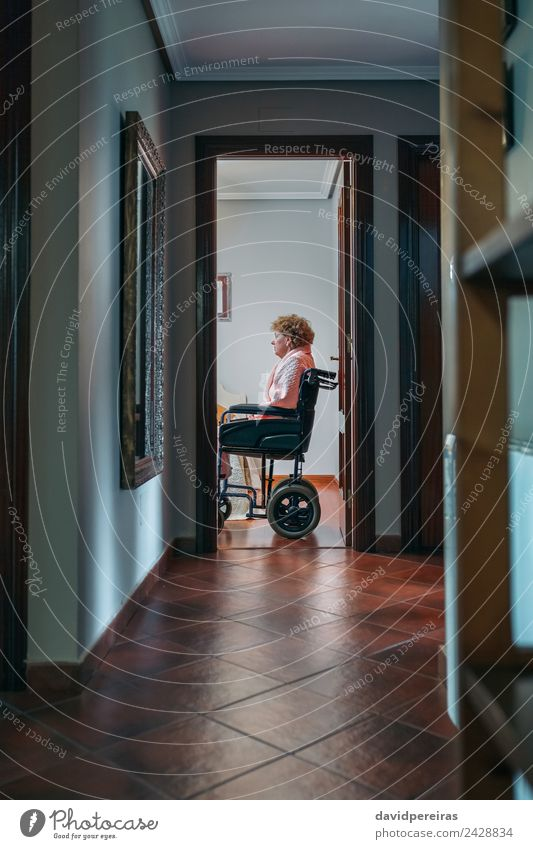 Lonely old woman in wheelchair Woman Human being Old Relaxation Loneliness Adults Lifestyle Sadness Health care Sit Authentic Chair Illness Medication
