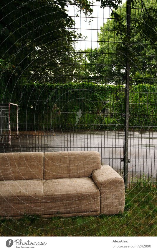 Green Tree Calm Playing Park Brown Leisure and hobbies Sit Gloomy Break Observe Sofa Fence Furniture Trashy Grating