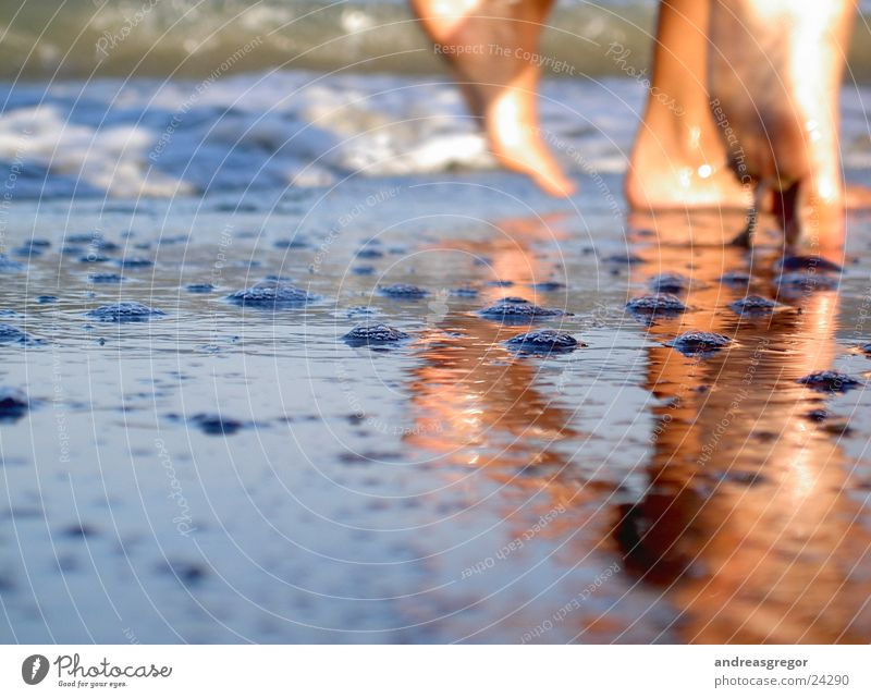 Human being Water Ocean Beach Vacation & Travel Style Feet Moody Lifestyle Perspective