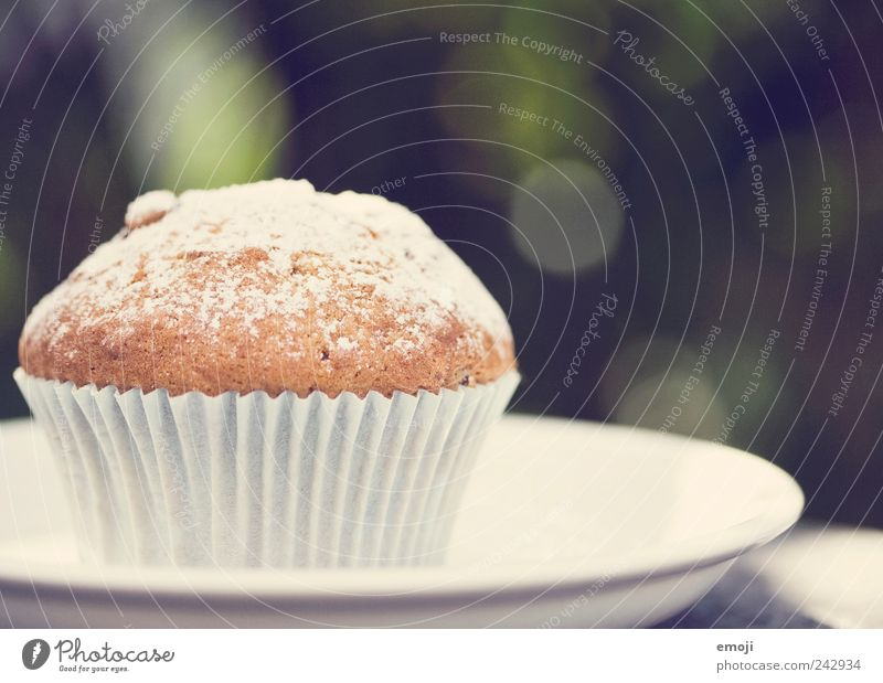 Muffin, powdered Dough Baked goods Dessert Candy Finger food Delicious Unhealthy Plate Edge of a plate Confectioner`s sugar Colour photo Exterior shot