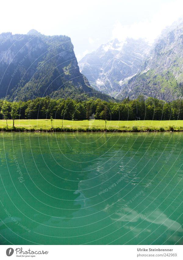 Water Green Vacation & Travel Tourism Trip Summer Mountain Lake Königssee Berchtesgaden Bavaria Nature Landscape Plant Beautiful weather Tree Grass Bushes