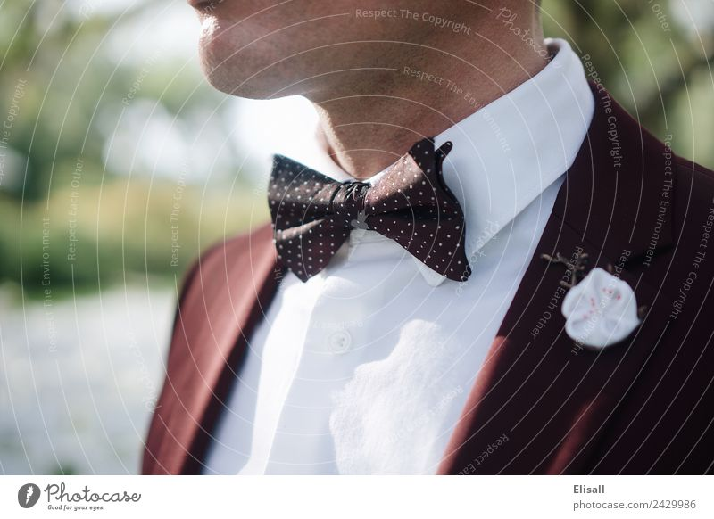 Man in suit wearing a bowtie Lifestyle Luxury Elegant Personal hygiene Human being Masculine Young man Youth (Young adults) Adults 1 Fashion Clothing Bow tie