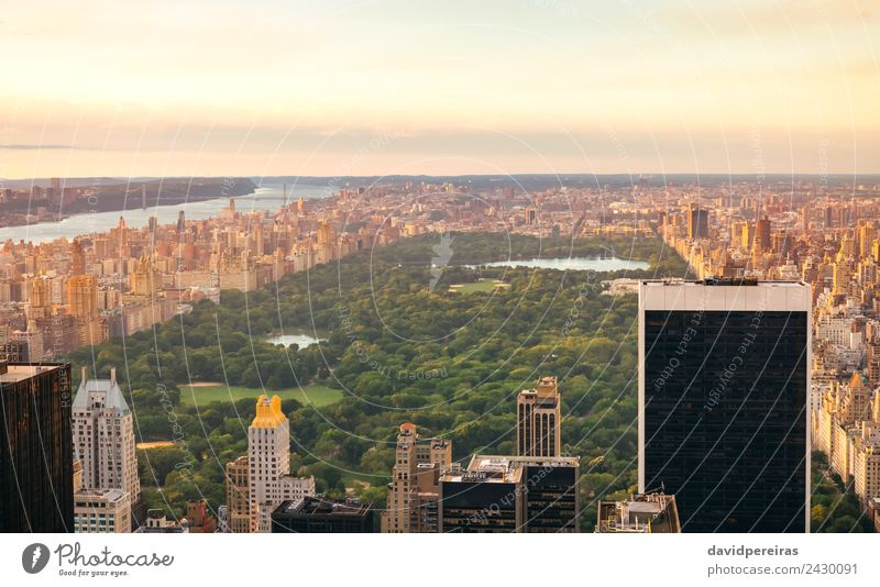 Aerial view of Central Park in Manhattan Relaxation Vacation & Travel Tourism Sightseeing Summer Landscape Sky Downtown Skyline High-rise Building Architecture