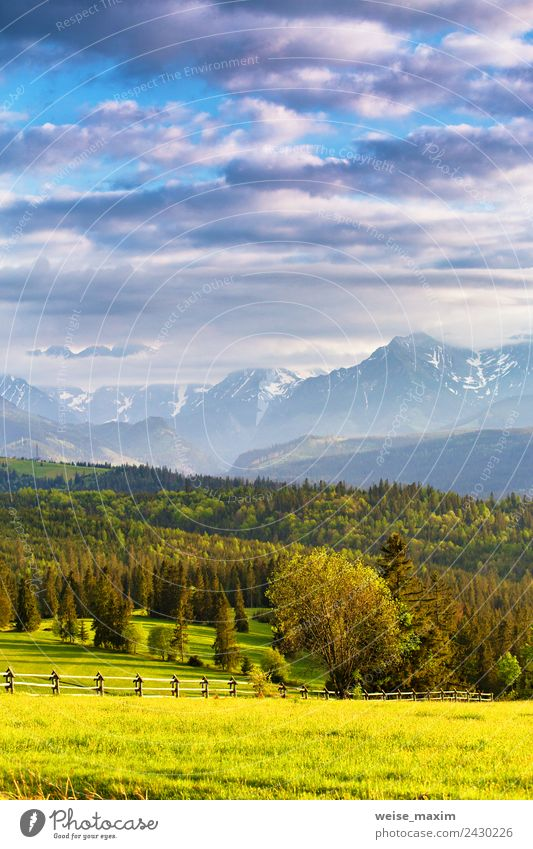 Inspiring evening light in spring. Sunset in Tatra Mountains Beautiful Vacation & Travel Tourism Summer Nature Landscape Sky Clouds Spring Tree Grass Meadow