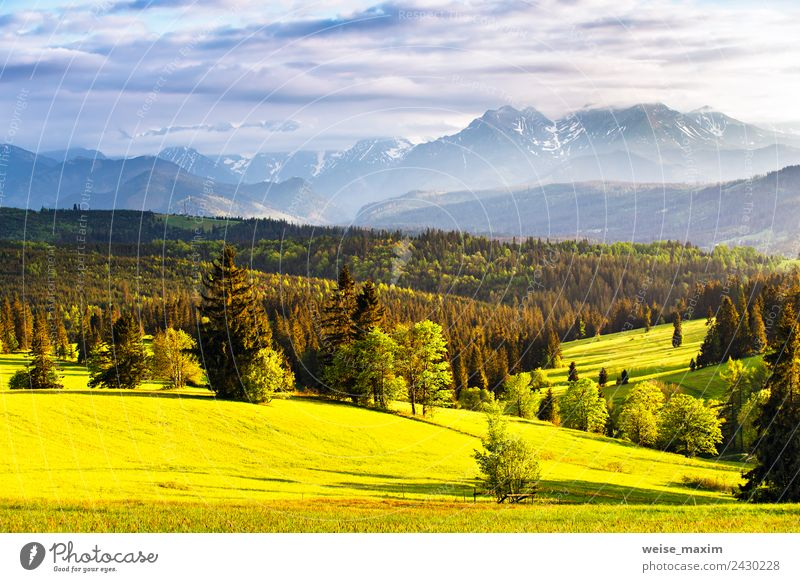 Mountain ridge over cloudy sky Sky Nature Vacation & Travel Summer Blue Plant Green Landscape Sun Tree Clouds Far-off places Forest Spring Meadow
