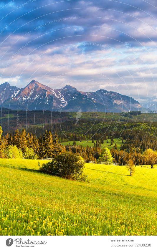 Inspiring evening light in spring. Sunset in Tatra Mountains Sky Nature Vacation & Travel Summer Blue Plant Beautiful Green Landscape Tree Clouds Forest Spring