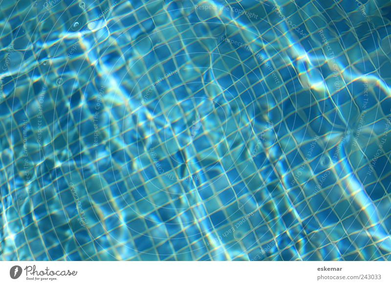 Blue Vacation & Travel Summer Joy Relaxation Life Background picture Swimming & Bathing Wet Fresh Esthetic Authentic Swimming pool Clean Wellness Tile
