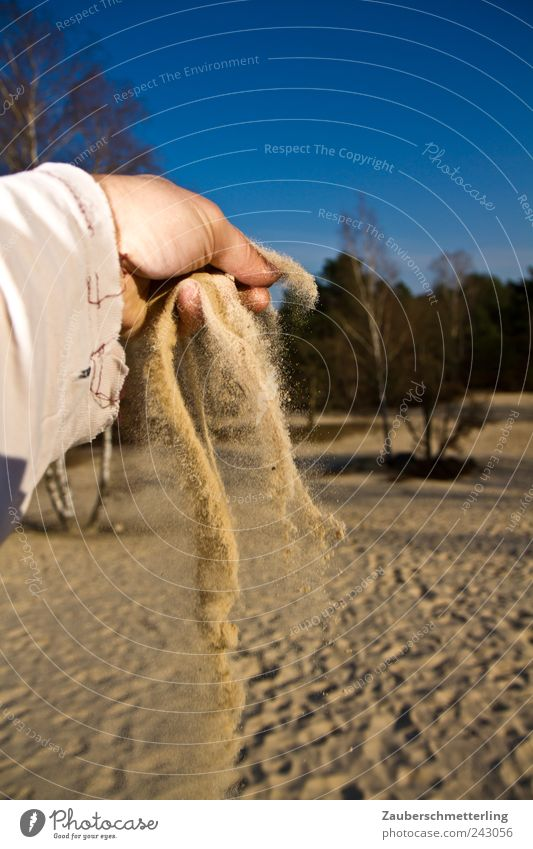 Hand Sky Tree Blue Vacation & Travel Sand Landscape Environment Time Hope Safety Adventure Soft Desert Transience Hot