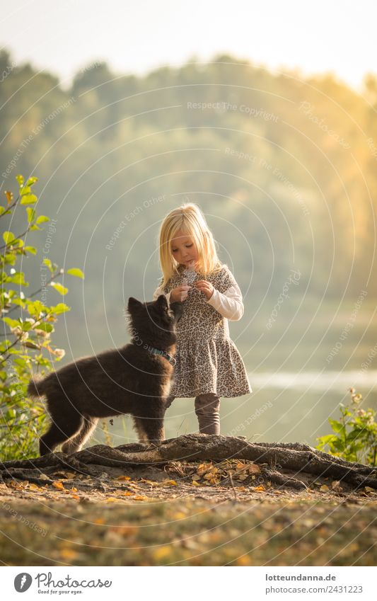 Girl with dog at the lake Feminine Toddler Body 1 Human being 3 - 8 years Child Infancy Water Sun Sunrise Sunset Sunlight Summer Beautiful weather Lakeside