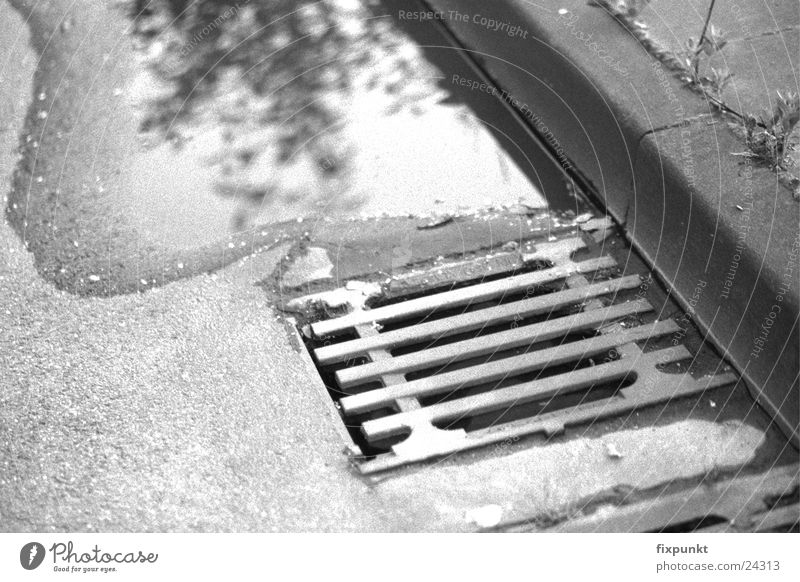 1632-047 Gully Reflection Curbside Puddle Black & white photo Street