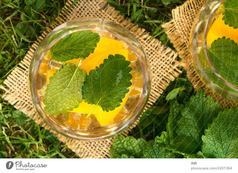 Peach, Lemon Balm and White Wine Punch Fruit Herbs and spices Beverage Alcoholic drinks Summer Grass Fresh Natural food wine cooler sweet Refreshment glass Lawn