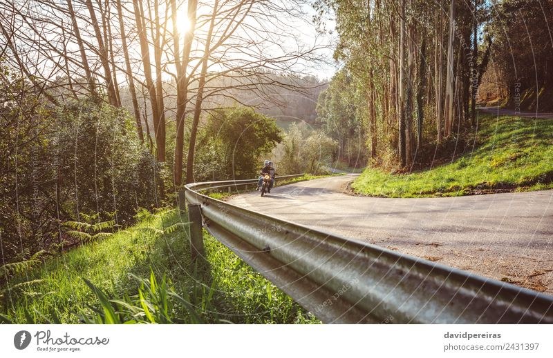 Senior couple riding motorbike along forest road Nature Vacation & Travel Old Green Landscape Tree Forest Street Adults Lifestyle Autumn Natural Tourism Freedom