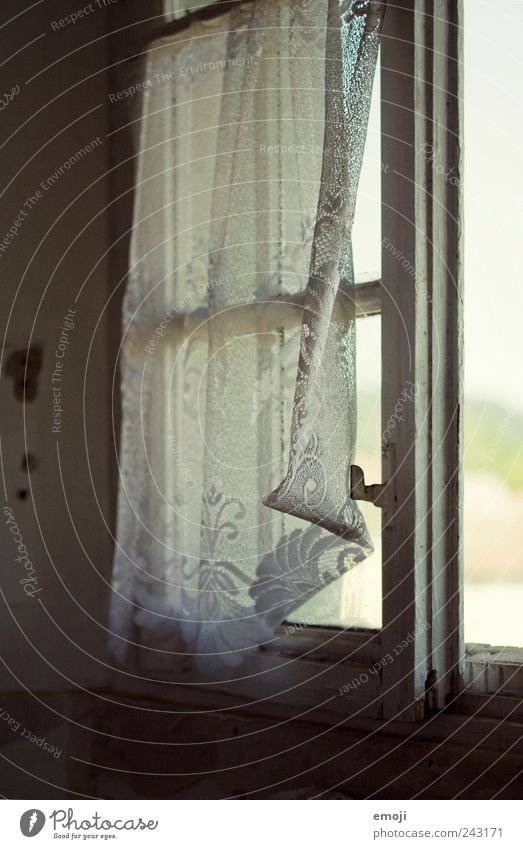 light breeze Village House (Residential Structure) Detached house Window Old Cold Curtain Drape Old fashioned Archaic Vintage Colour photo Interior shot Detail