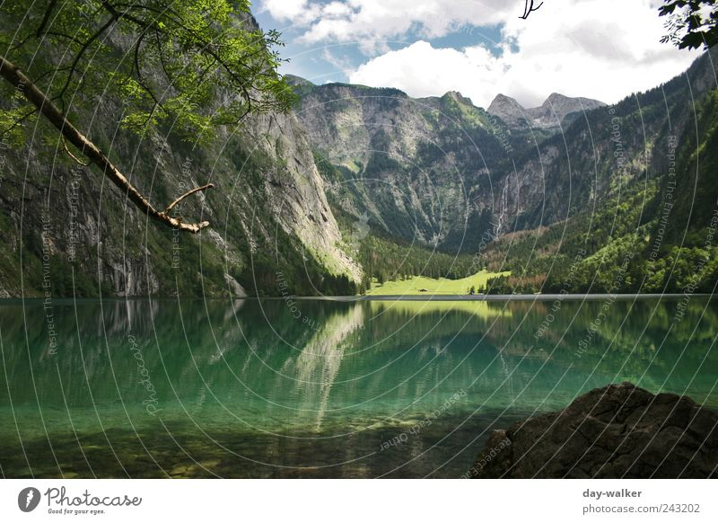 Landscape Königssee Nature Plant Animal Water Sky Clouds Summer Beautiful weather Hill Rock Alps Mountain Peak Lake Cold Blue Brown Green White rock walls