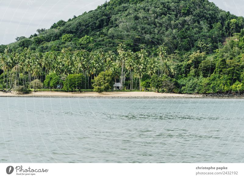 place to be Vacation & Travel Tourism Far-off places Summer Summer vacation Beach Ocean Thailand Deserted Loneliness Exotic Virgin forest Hut Palm tree Mountain