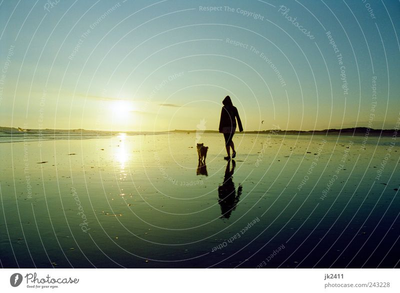 Woman Human being Sky Nature Water Sun Summer Vacation & Travel Beach Ocean Calm Animal Relaxation Freedom Environment Landscape