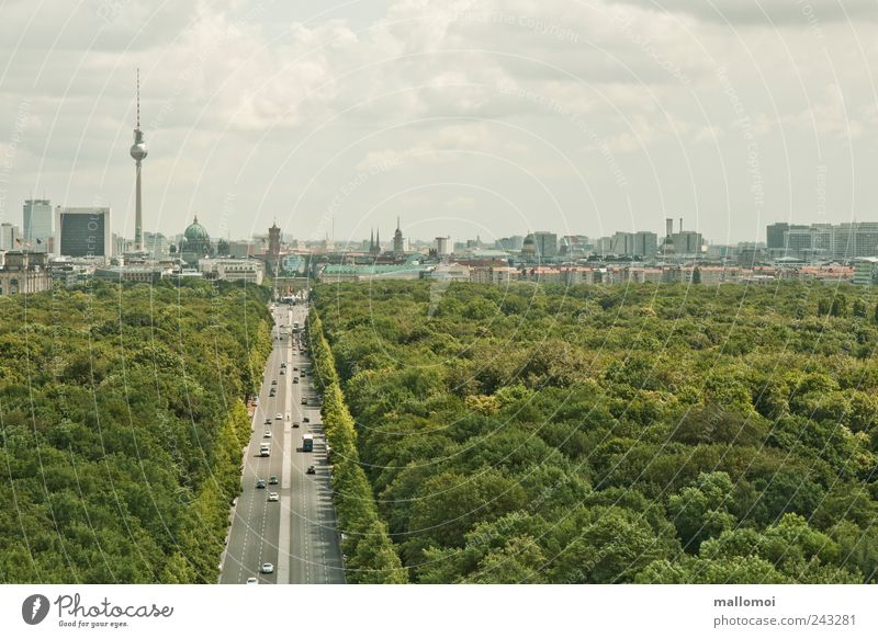 Sky City Green Plant Vacation & Travel House (Residential Structure) Clouds Forest Life Berlin Park High-rise Transport Vantage point Skyline