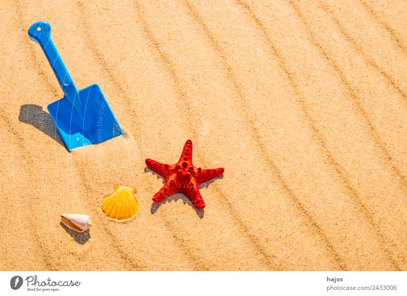 Shovel and starfish on the beach Joy Relaxation Vacation & Travel Summer Beach Sand Baltic Sea Yellow Infancy Tourism Blue Toys play in sand Playing Starfish
