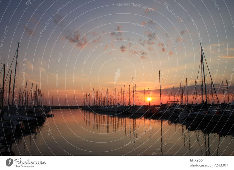 Summer Calm Germany Horizon Gold Europe Harbour Baltic Sea Wanderlust Sailboat Yacht Town Dawn Reflection Kühlungsborn