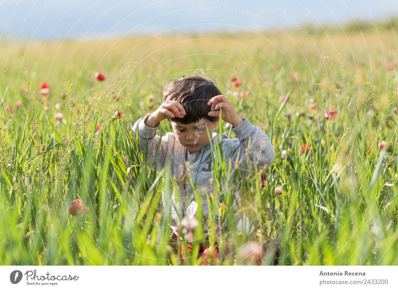 Boy in flowers Playing Boy (child) Infancy 1 Human being 1 - 3 years Toddler Flower Grass Emotions Joy field spring Wheat outdors poppies polen kid Playful
