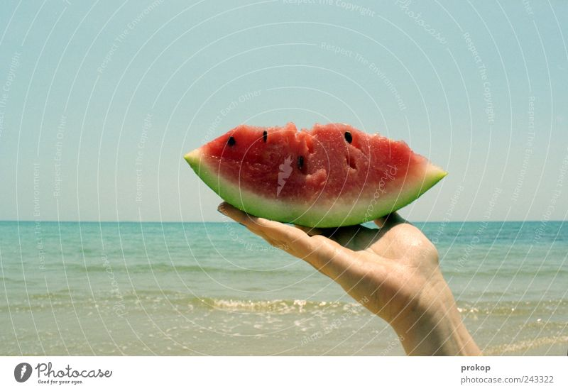 Sky Nature Water Summer Ocean Joy Beach Relaxation Nutrition Environment Landscape Food Coast Healthy Horizon Fruit
