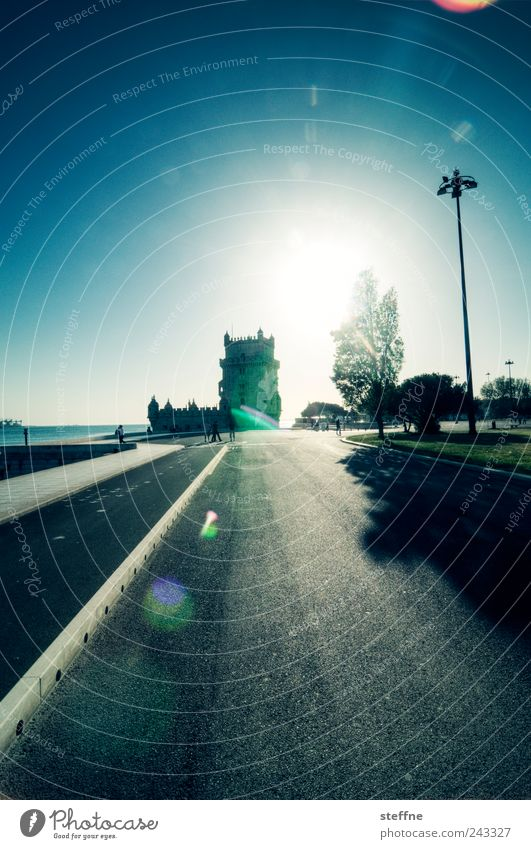 Tree Sun Cool (slang) Strong Lantern Landmark Beautiful weather Portugal Dazzle Lisbon Tourist Attraction Old town Cloudless sky Tower of Belem