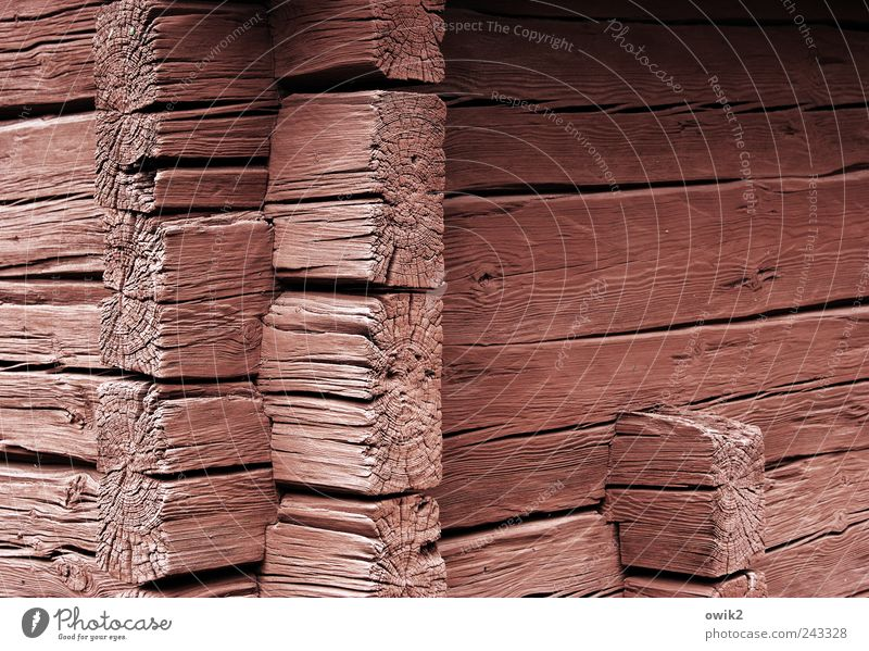 Old White Black Wall (building) Wood Wall (barrier) Building Architecture Pink Facade Technology Simple Firm Village Hut