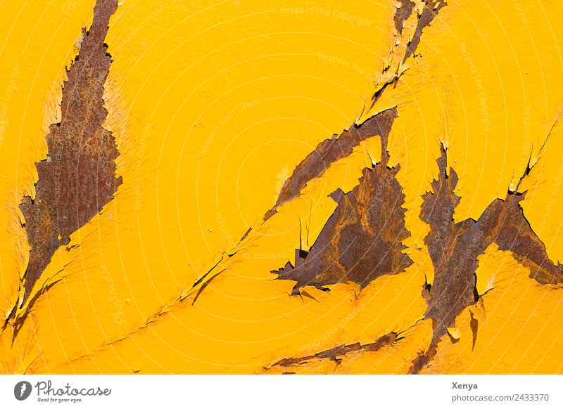 Yellow rust Wall (barrier) Wall (building) Metal Steel Rust Broken Brown Background picture Varnish Flake off Colour photo Exterior shot Abstract