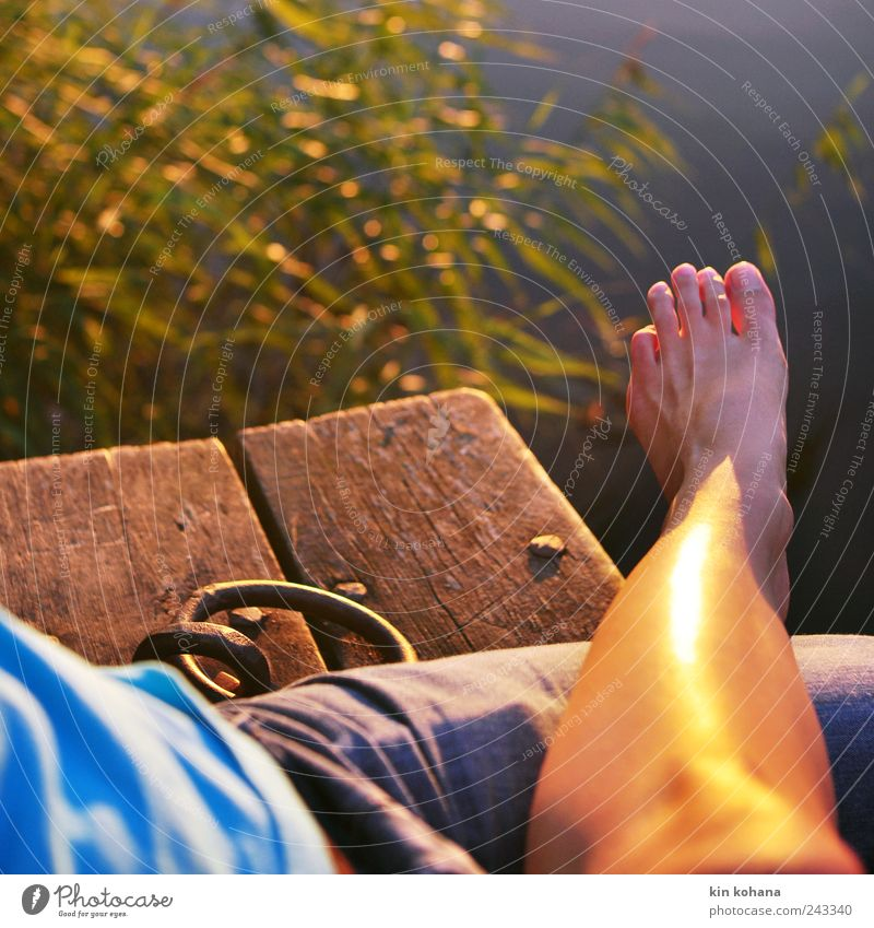 Relax Relaxation Vacation & Travel Trip Summer vacation Sunbathing Masculine Couple Legs Feet 2 Human being Sunrise Sunset To enjoy Evening sun Lake Lakeside