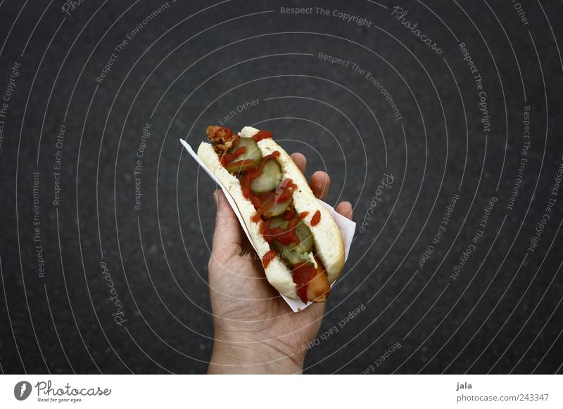 hot dog Food Sausage Roll Nutrition Fast food Hand Delicious Hot dog Retentive Colour photo Exterior shot Copy Space left Copy Space right Copy Space top