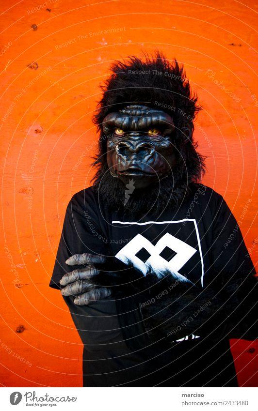 gorilla Body 1 Human being Gorilla Monkeys Orange Black Threat Protest Power Town Posture Colour photo Exterior shot Neutral Background Day Contrast