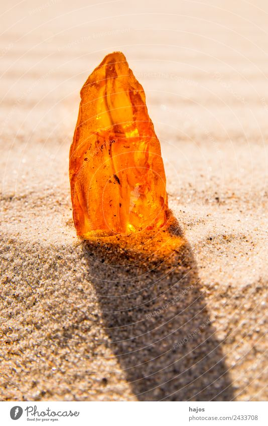 Amber at the Baltic Sea beach Juice Beach Nature Sand Authentic Yellow Precious stone Resin Old Illuminate Brilliant Mystic Bright lithotherapy